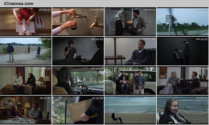 تماشای آنلاین فیلم ناگهان درخت